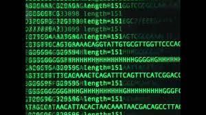 Yeni Nesil Dizileme (NGS- Next-Generation Sequencing) Nedir?