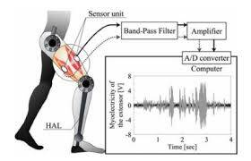 Analysis Models in Gait Detection Based on Machine Learning