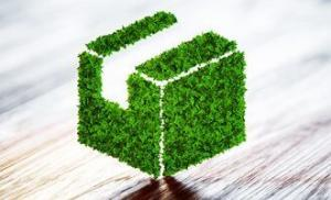 Carbon Footprints in Sustainable Development