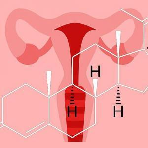 Menstrual Cycle, Hormone Fluctuations and Mapping