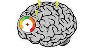 Active, Short and Long Term Memory Features