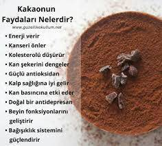 Health and Beauty Benefits of Cocoa Powder