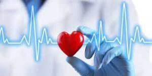 Thoracic Organ Care System (OCS)