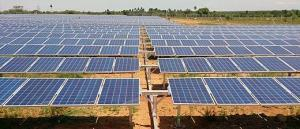 What is Agrophotovoltaic Energy?