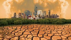Uncontrolled Use of Natural Resources and Its Consequences