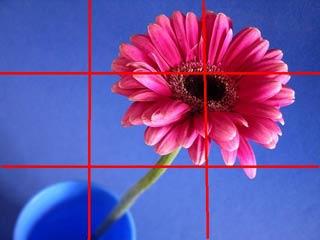 [Resim: PinkGerb2.jpg]