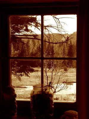 [Resim: WindowFr.jpg]